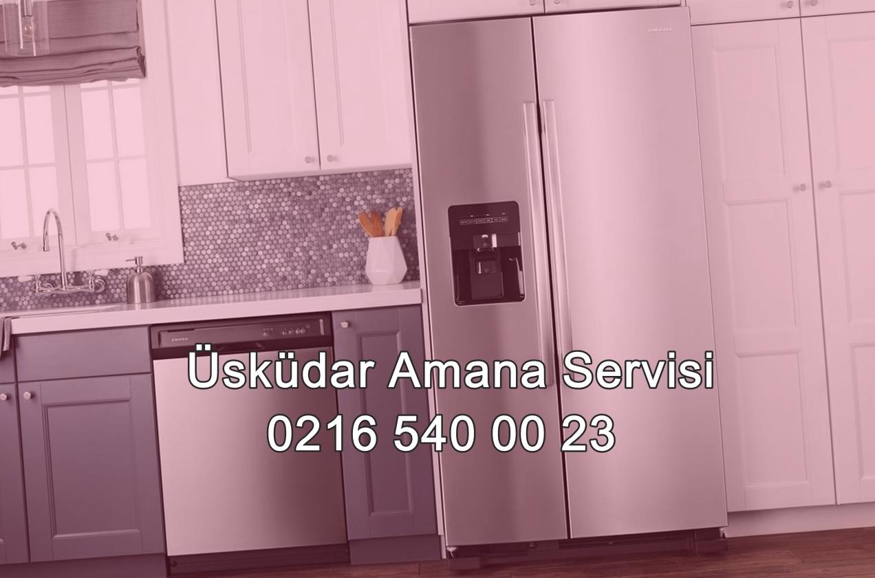 Üsküdar Amana Servisi